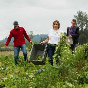 People working on Farm