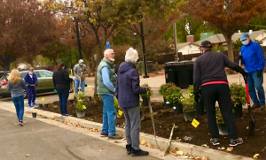 Modesto Rotrians planting bushes to beautify a park