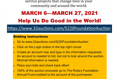Flyer promoting District Foundation Auction. See text for details.