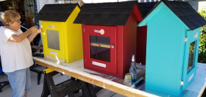 Rotarian painting colorful little libraries